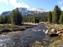 Montagne avec la rivière en parc national de yosemite - Etats-Unis Amérique photo libre de droits