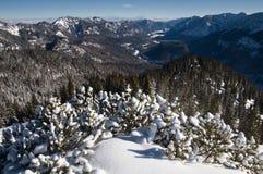 Montagne bavaresi delle alpi Fotografie Stock Libere da Diritti