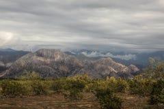 Montagne bianche Immagini Stock