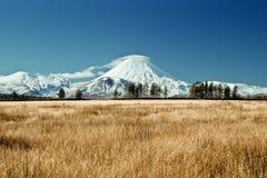 Montagne blanche Photos libres de droits