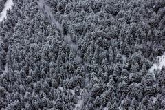 Montagne blanche Photographie stock libre de droits
