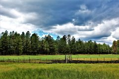 Montagne blanche, Pinetop Lakeside, Arizona, Etats-Unis photos stock