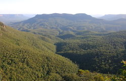 Montagne blu. L'Australia. Immagine Stock