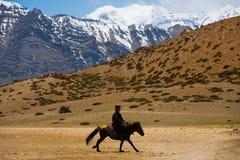 Montagne bouddhiste de cheval d'équitation d'homme de pélerin Images stock