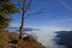 Montagne brumeuse Images stock
