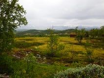 Montagne brumeuse photographie stock
