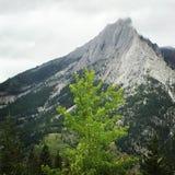 Montagne brumeuse photo stock