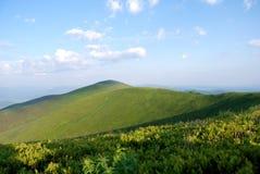 Montagne carpatiche Immagini Stock