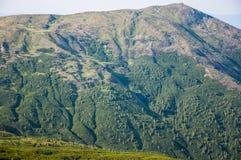 Montagne carpatiche Fotografia Stock