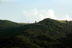Montagne carpatiche Immagine Stock