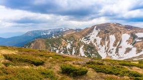 Montagne carpatiche fotografia stock libera da diritti