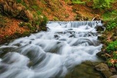 Montagne carpatiche Il fiume della montagna vicino alla cascata Shipot Immagini Stock Libere da Diritti