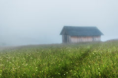 Montagne carpatiche La casa è su un pendio nell'erba verde, la nebbia, montagne nella distanza Immagini Stock
