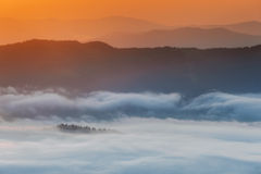 Montagne carpatiche Montagne coperte in foschia ad alba Fotografia Stock