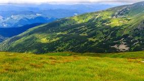 Montagne carpatiche pittoresche, paesaggio di estate, Ucraina della natura Fotografia Stock