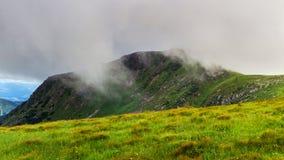 Montagne carpatiche pittoresche, paesaggio di estate, Ucraina della natura Fotografia Stock Libera da Diritti