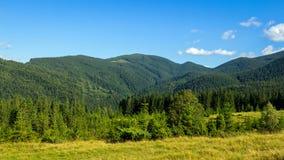 Montagne carpatiche pittoresche, paesaggio di estate, Ucraina della natura Fotografie Stock Libere da Diritti