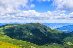 Montagne carpatiche pittoresche, paesaggio di estate, Ucraina della natura Immagine Stock