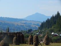 Montagne carpatiche rumene immagini stock