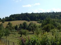 Montagne carpatiche rumene Immagine Stock Libera da Diritti