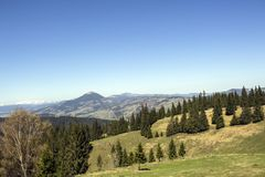 Montagne carpatiche vedute da Vatra Dornei Immagini Stock Libere da Diritti
