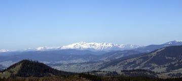 Montagne carpatiche vedute da Vatra Dornei Fotografia Stock Libera da Diritti