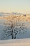 Montagne ceche nell'inverno Fotografie Stock Libere da Diritti