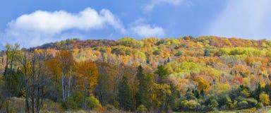 Montagne colorée Images stock