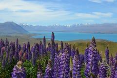 Montagne colorate Fotografia Stock Libera da Diritti
