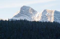 Montagne con la foresta Fotografia Stock Libera da Diritti