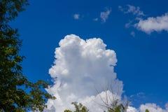 Montagne con la giungla e nuvoloso Fotografie Stock