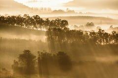 Montagne con la luce di mattina Fotografia Stock Libera da Diritti