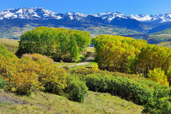 Montagne con la tremula gialla, verde e rossa variopinta durante la stagione di fogliame Fotografia Stock