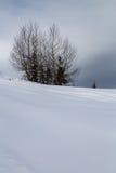 Montagne coperte di neve e circondate dalle nuvole Immagini Stock Libere da Diritti