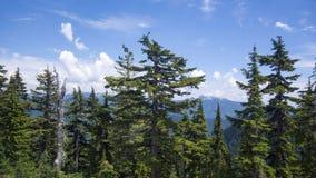 Montagne costiere vicino a Vancouver Fotografia Stock