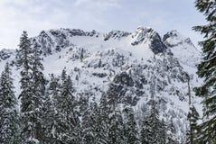 Montagne couverte par neige Ridge d'hiver avec la crête de sommet encadrée par Forest Trees Photographie stock libre de droits
