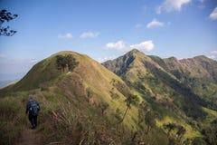 Montagne d'éléphant ou montagne de galaxie PA nationale de Pha Phum de lanière Photos libres de droits