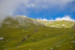 Montagne d'ADAC, Slovénie Photo libre de droits