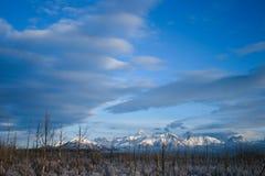 Montagne d'Alasca in neve Fotografia Stock Libera da Diritti
