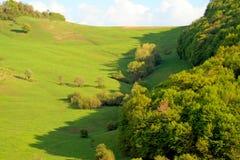 Montagne d'Allgreen Photos libres de droits