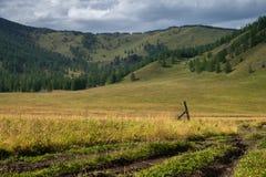 Montagne d'Altai en Russie Photo libre de droits