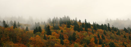 Montagne d'arbres d'automne d'automne photos stock
