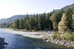 Montagne d'arbres de rivière photographie stock