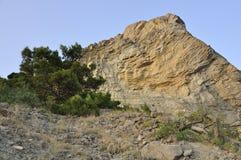 Montagne d'Eagle et pin criméen Photo stock