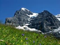 Montagne d'Eiger en Suisse Image libre de droits