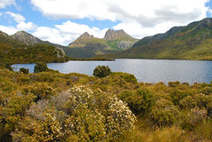 Montagne de berceau en Tasmanie Photos libres de droits
