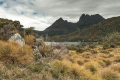 Montagne de berceau en Tasmanie, Australie image libre de droits