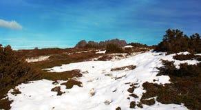 montagne de berceau neigeuse Image stock