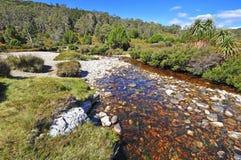 Montagne de berceau, Tasmanie, Australie Photographie stock libre de droits