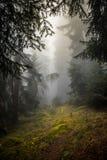 Montagne de brouillard de la Suisse image libre de droits